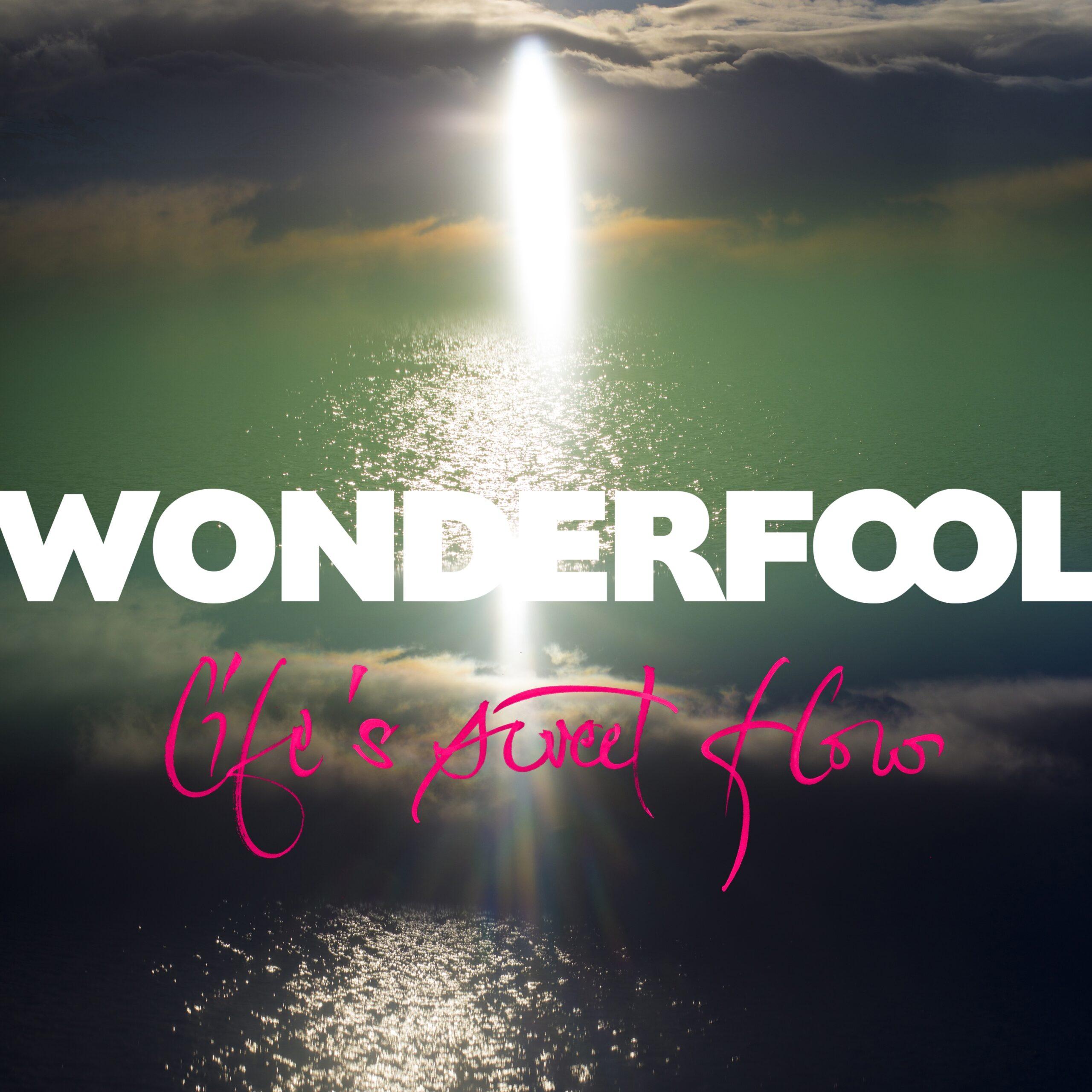 wonderfool album life's sweet flow
